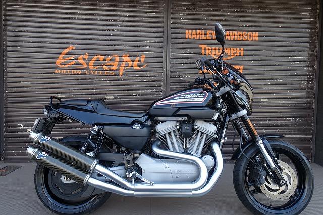 HARLEY-DAVIDSON XR1200 カスタム